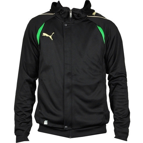 Bluza copii Puma PowerCat IT 110 Hooded Sweat 652087181