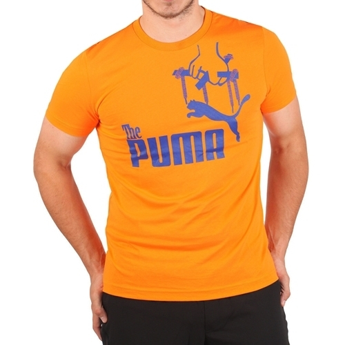 Tricou barbati Puma Don Tee 81934310