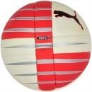 Minge Handbal Puma PowerCat 110 HB IHF 08150401